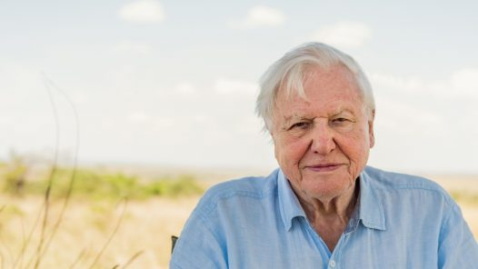 A Life on Our Planet: Sir David Attenborough's Statement