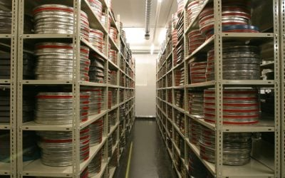 Why We Need Documentary Preservation