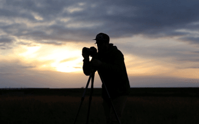 How to Market and Distribute your Documentary